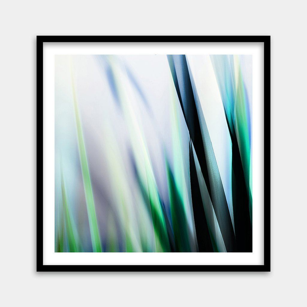 artistic nature photography framed