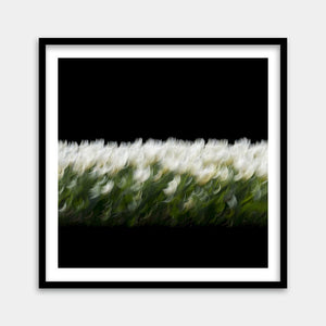 black white flower art