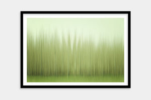 framed modern trees art
