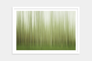 framed contemporary trees art