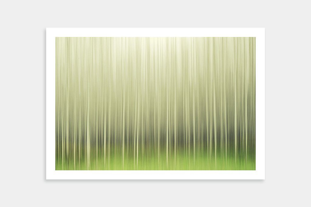 forest artwork buy online