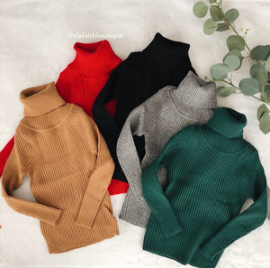Leena ribbed turtle neck