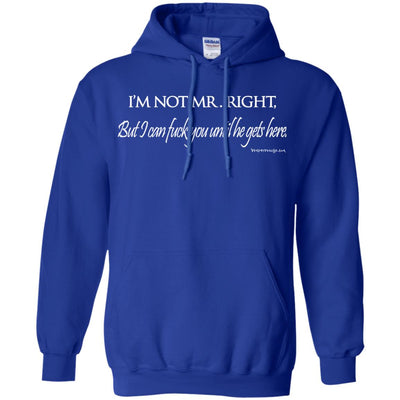 I'm Not Mr. Right But I Can Fuck You Until He Gets Here Hoodies