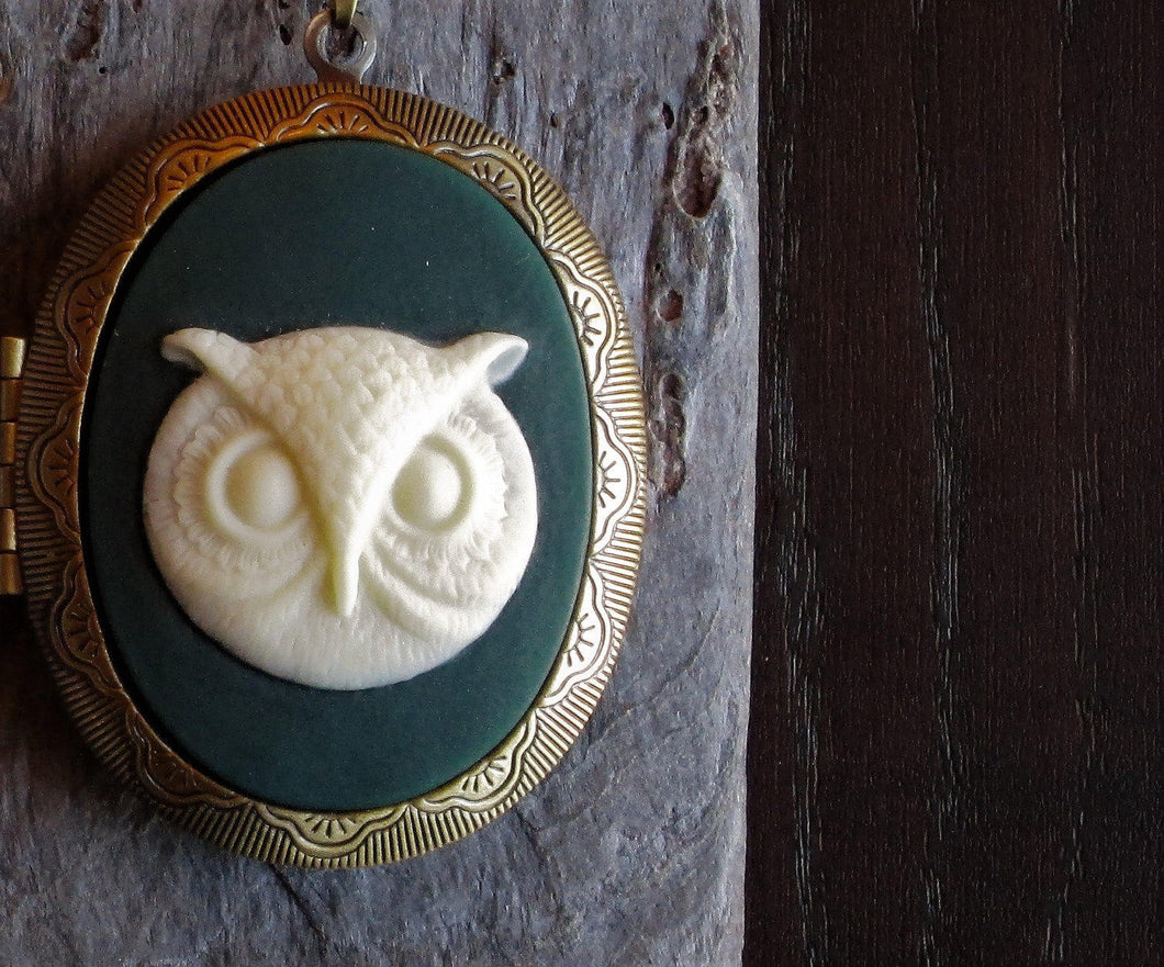 Owl cameo locket necklace