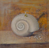 Still Life of the Snail