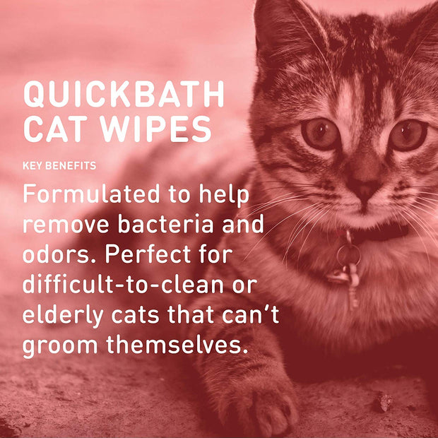 QuickBath® Cat Wipes Removes Odor & Bacteria [product_type - IVS Pets International Veterinary Sciences data-image-id=