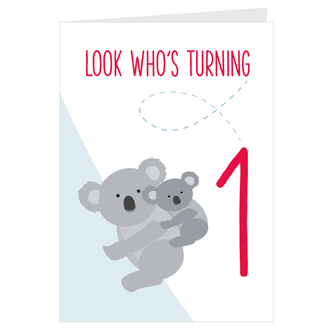 Koala Look Who's Turning 1