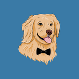 Golden Retriever T Shirt For Girls | Funny Dog Tee | The Jazzy Panda
