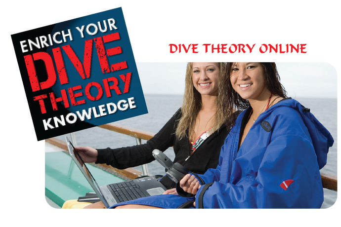 PADI Diving Theory Online