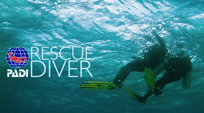 PADI Rescue Dive Course