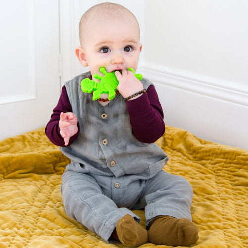 Bambeado Dibly Dino-Sore-No-More Teether and Toothbrush