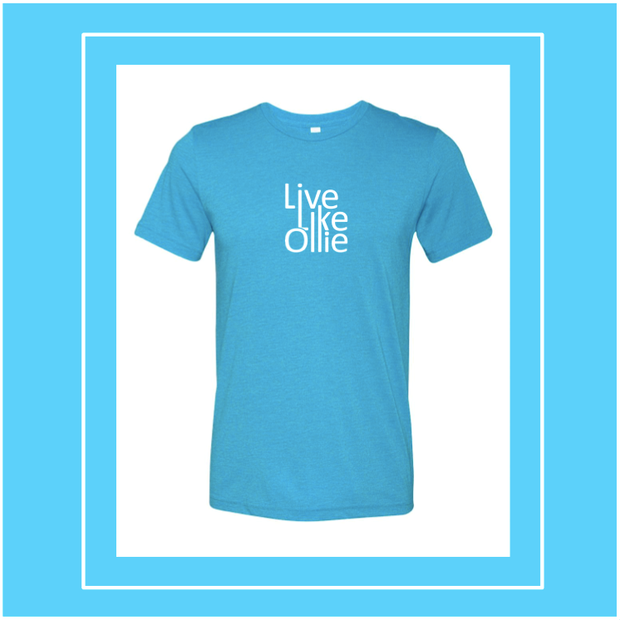 "FUNDRAISER ""Live Like Ollie"" Bella + Canvas - Unisex Triblend Short Sleeve Tee"