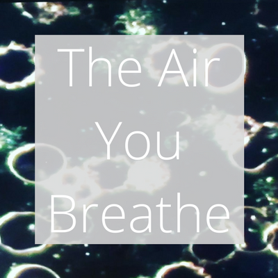 The Air You Breathe, and its side effects on the system | Whistler Air Quality