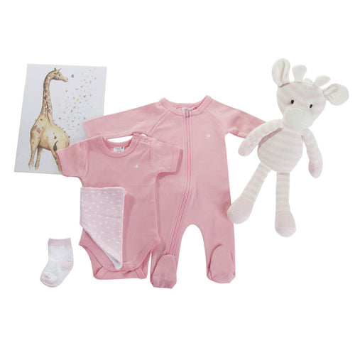 Hampers By Nadine - Hamper - Pink Giraffe - Hampers by Nadine