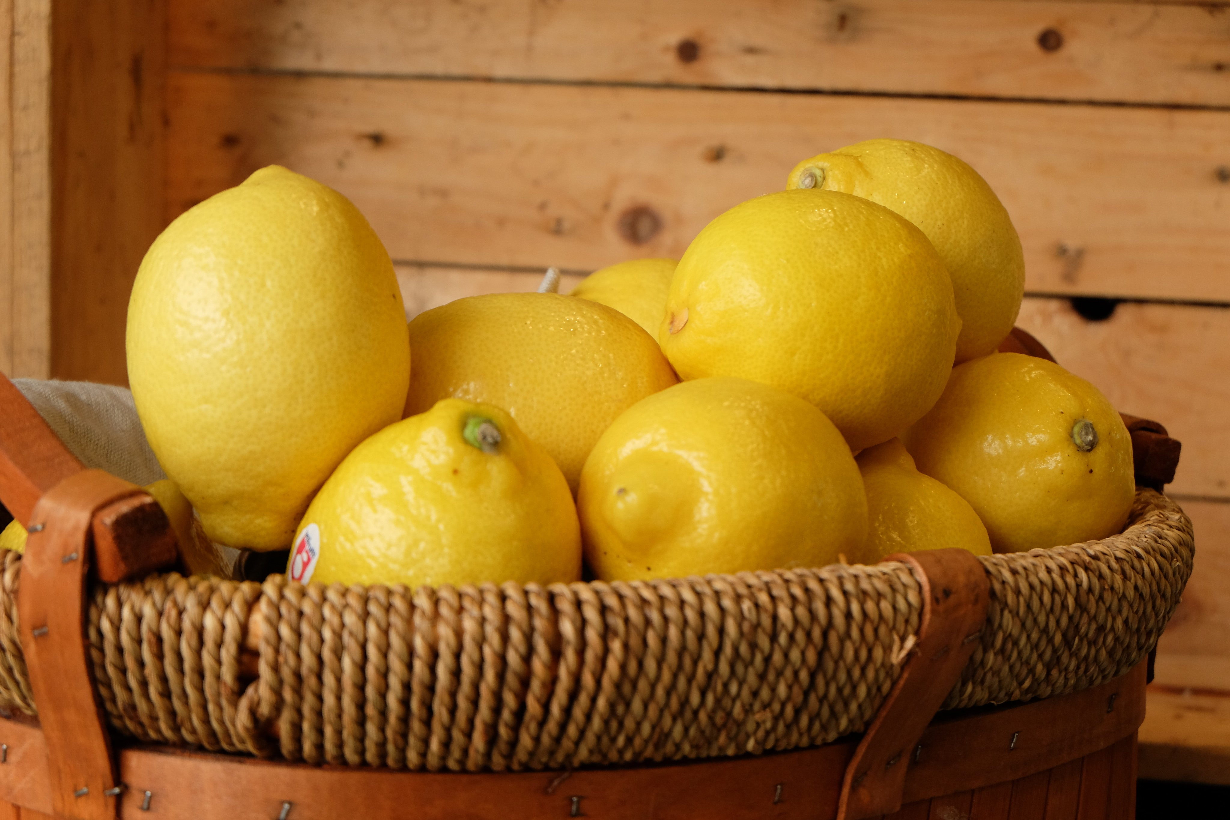 Lemons 7 pieces Pack