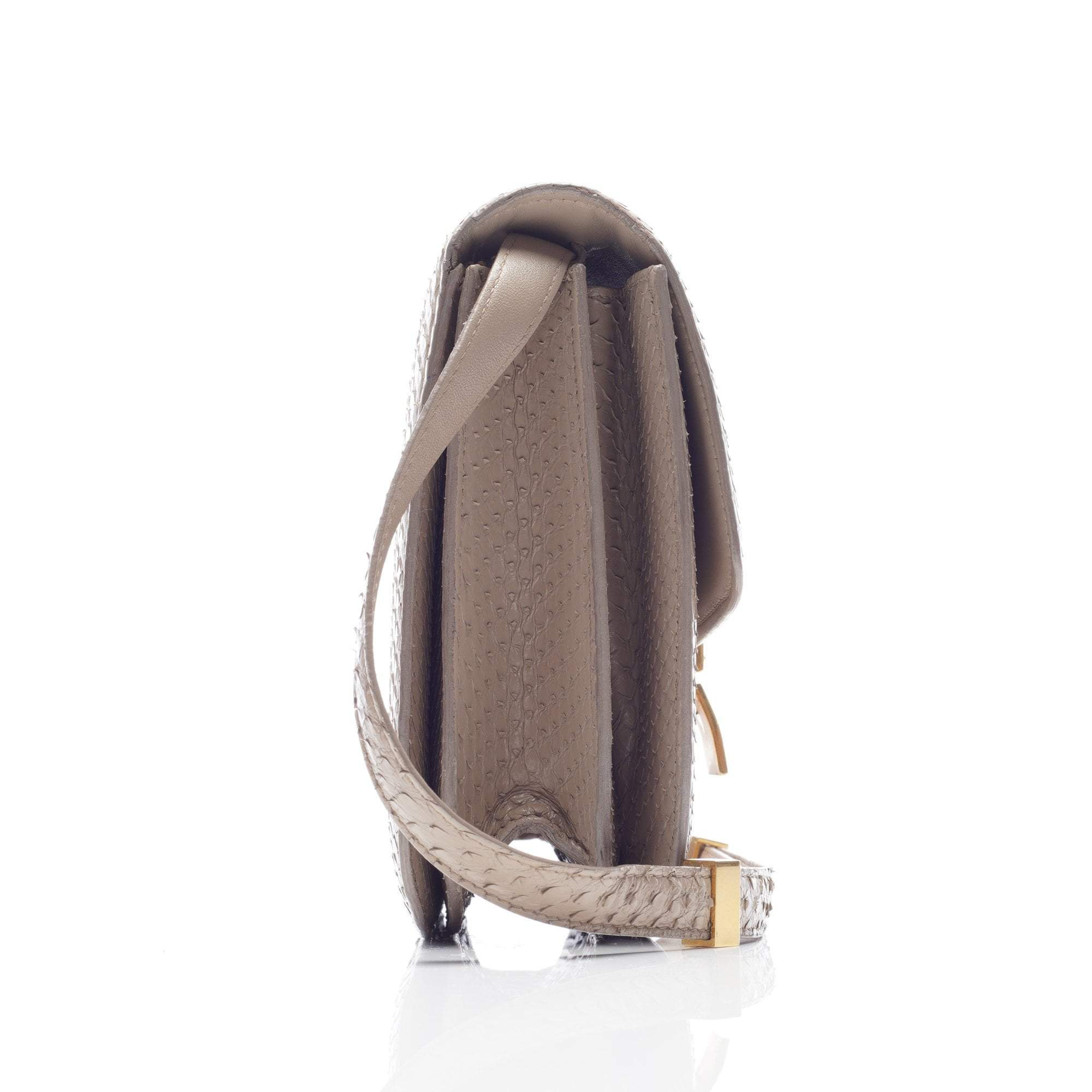 Celine Python Box in Taupe Bag