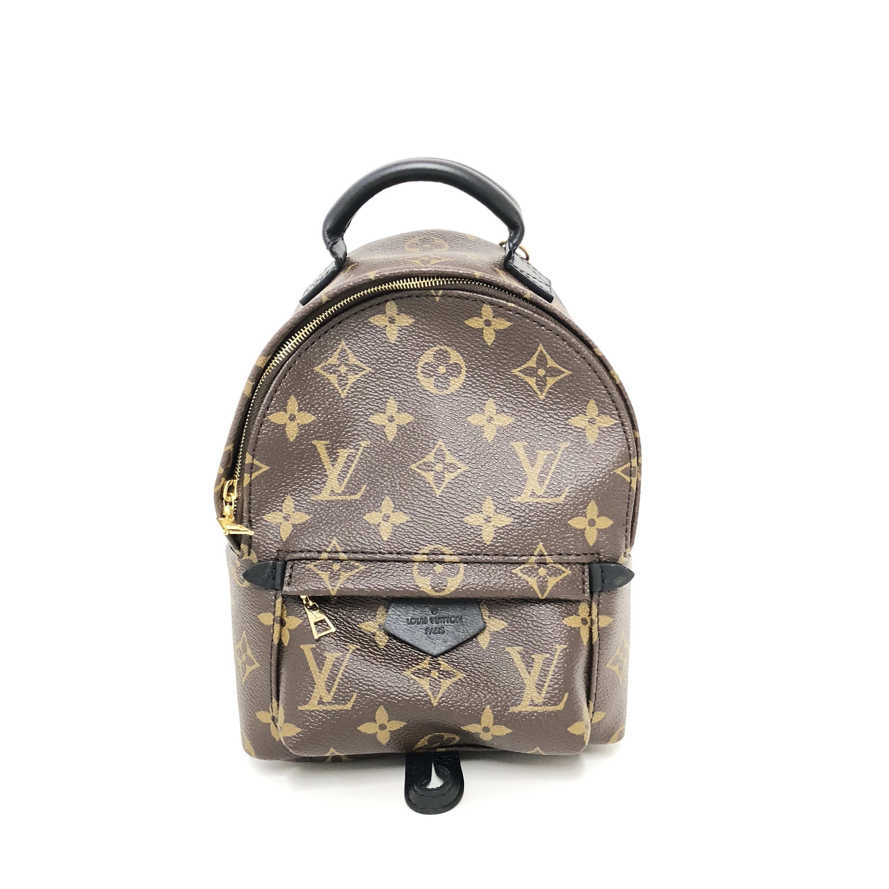 3a5a3f83cc7f Louis Vuitton Palm Springs Backpack Mini – Garderobe