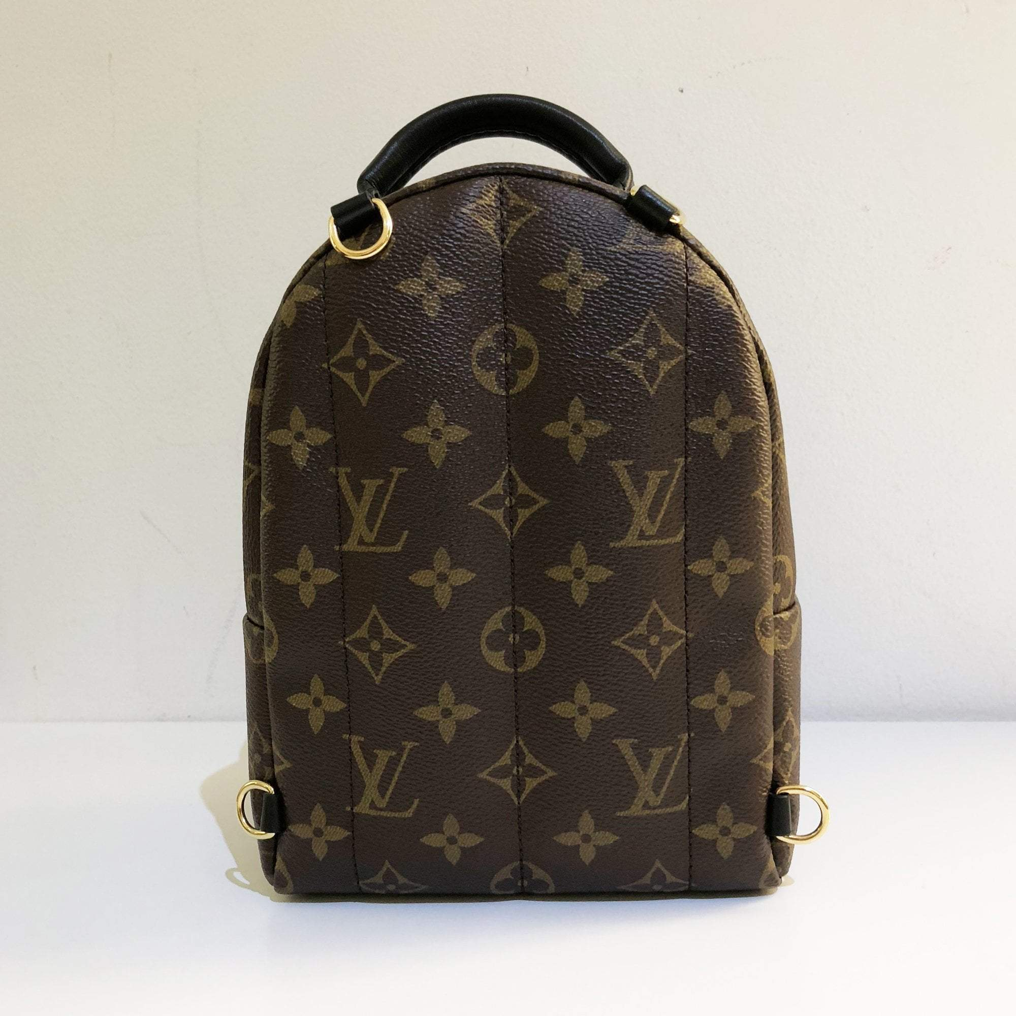 1d7d02754310 Louis Vuitton Palm Springs Backpack Mini – Garderobe