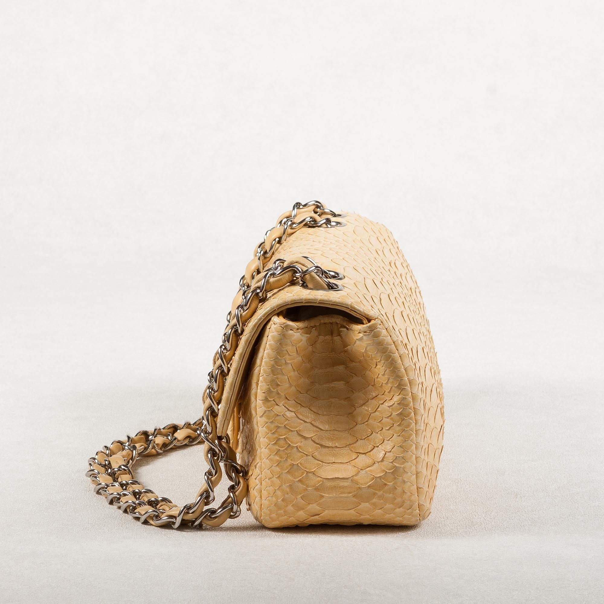 Timeless Python Single Flap Bag