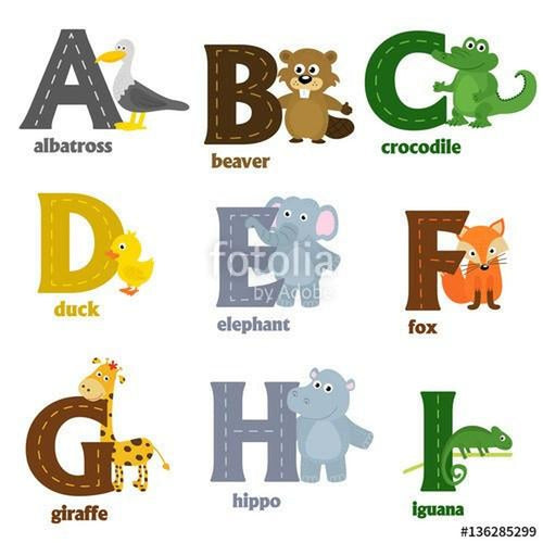 Animal A-Z Alphabet Wall Stickers-Creative Wallpaper