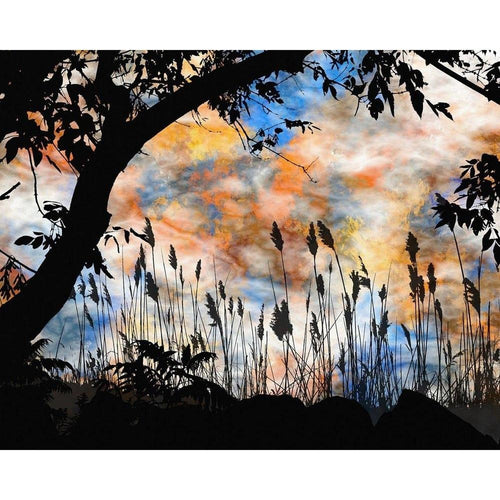 Artistic Wall Murals - Premium-Creative Wallpaper