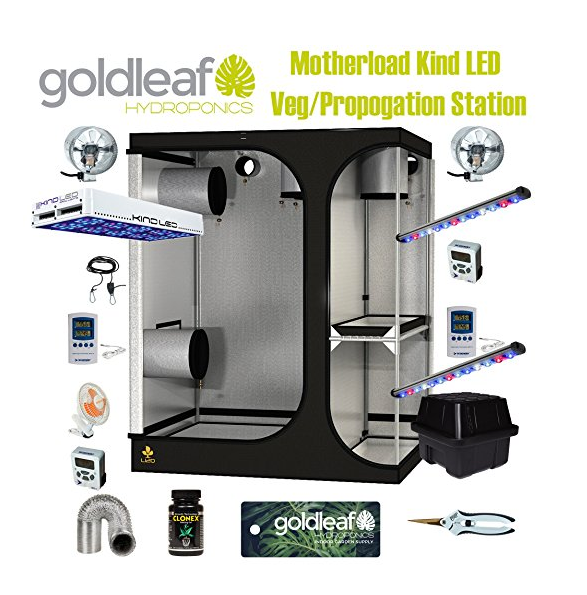 Mother Load Grow Tent Kit from Goldleaf Hydroponics ...  sc 1 st  Tentsy & Mother Load Grow Tent Kit from Goldleaf Hydroponics | Tentsy u2014 tentsy