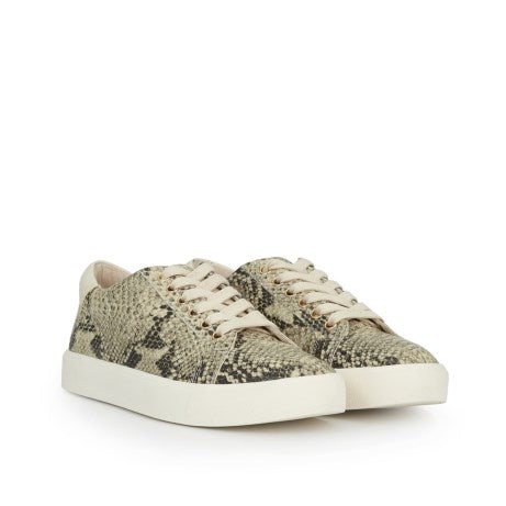 Sam Edelman Ethyl Lace Up Sneaker in Pacific Snake