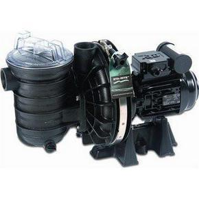 Sta-Rite 5P2R Pool Pump 0.75hp