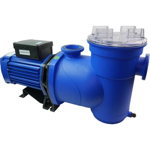 Argonaut Swimming Pool Pump - World of Pools