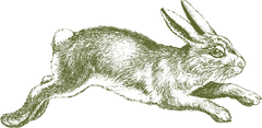larger-cross-bunny-logo