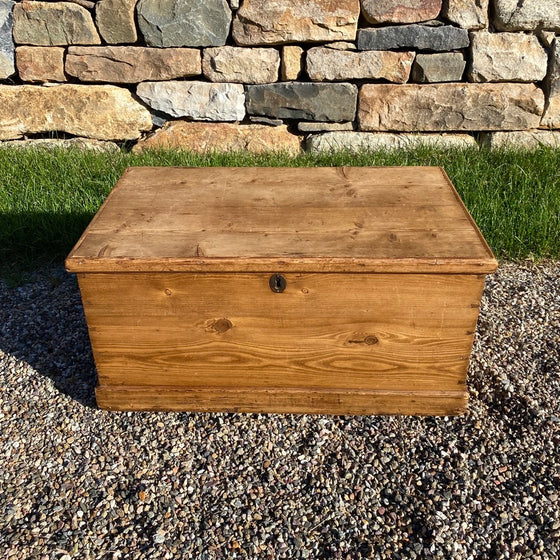 Scrub Pine Blanket Box