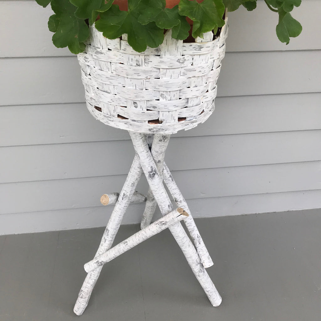 Vintage Twig Plant Stands with Faux Birch Finish