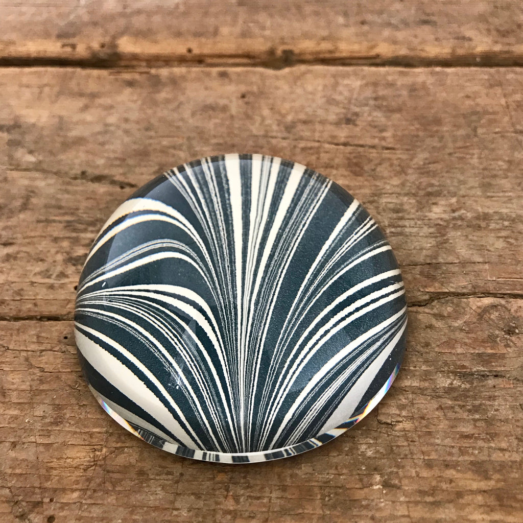 Navy Zebra Paperweights