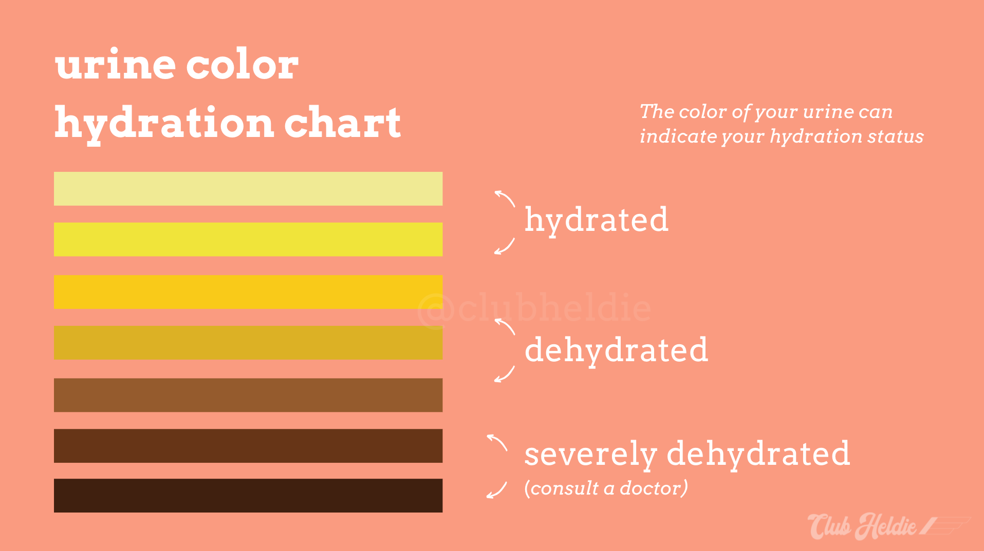 urine color hydration chart for runners