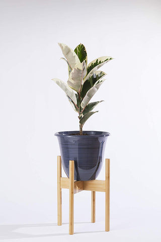 Midcentury Plant Stand in Natural or Black Bamboo