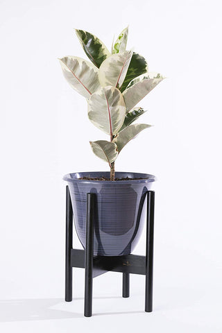 Image of Midcentury Plant Stand in Natural or Black Bamboo