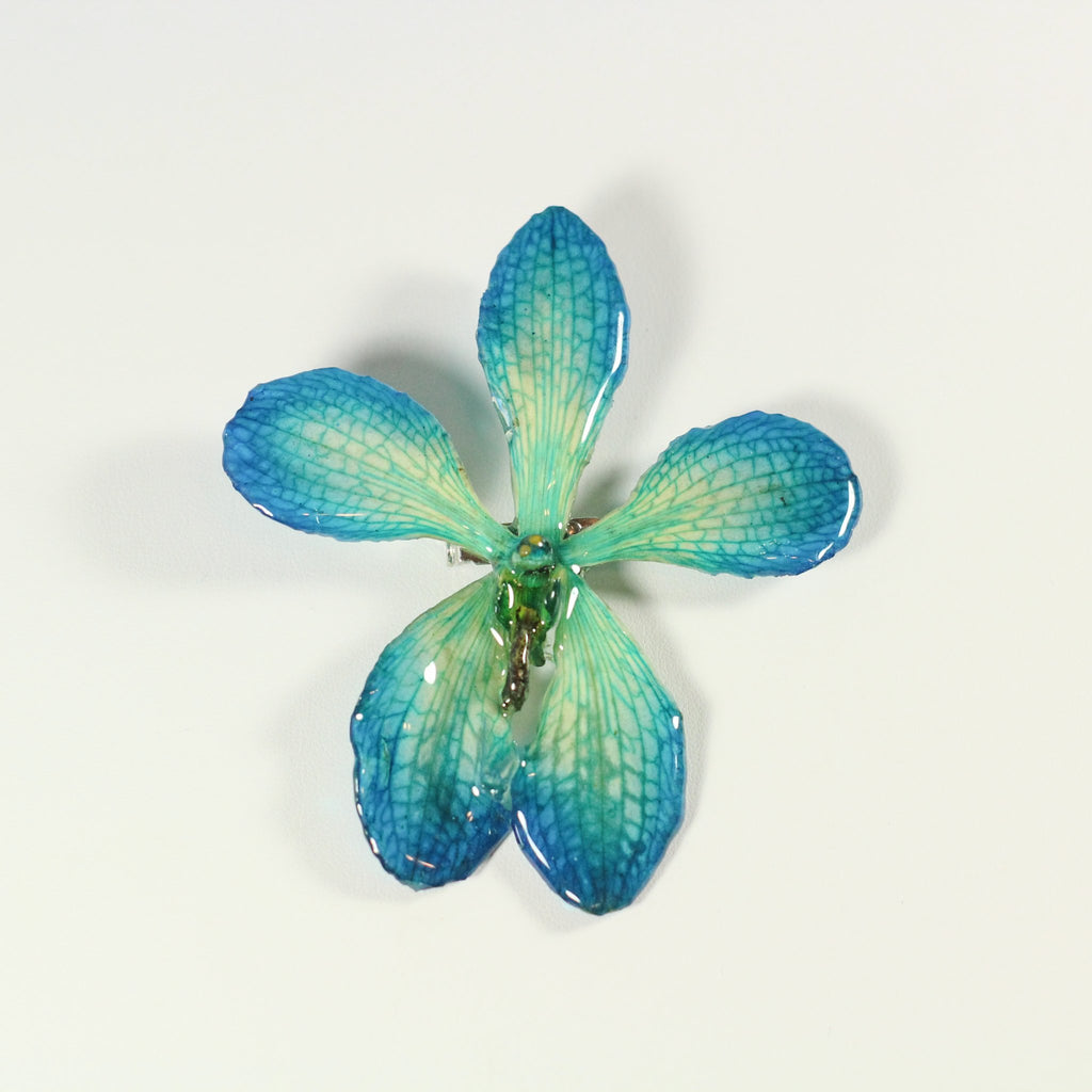Blue Mokara Real Orchid Brooch - Devi & Co