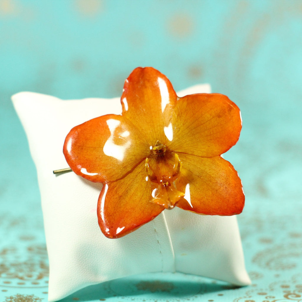 Orange Phalaenopsis Star Real Orchid Hair Pin - Devi & Co