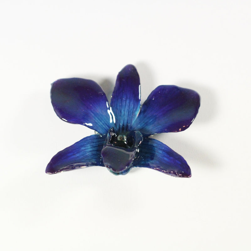 Real Orchid Brooch - Devi & Co