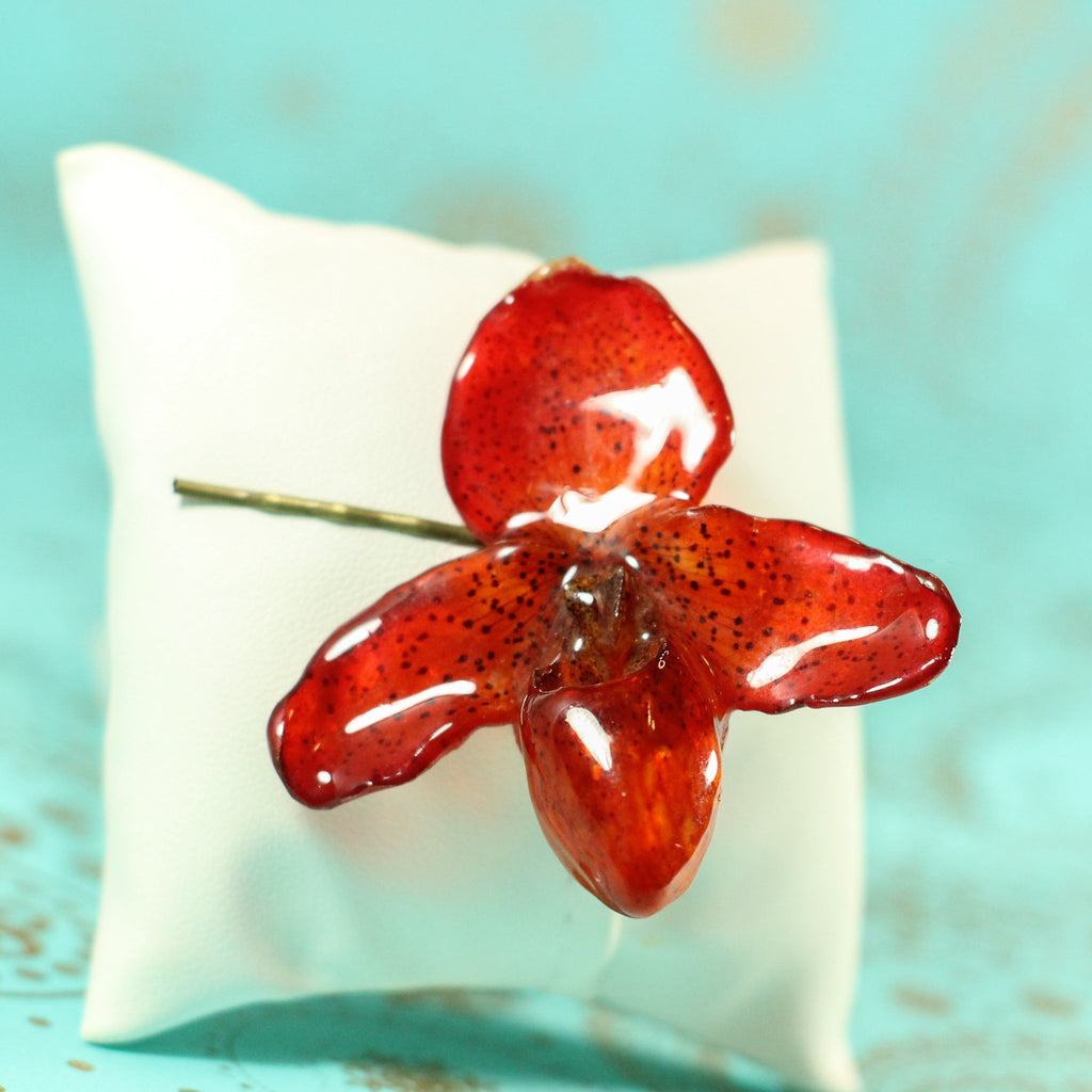 Red PAPHIOPEDILUM Bellatulum Real Orchid Hair Pin - Devi & Co