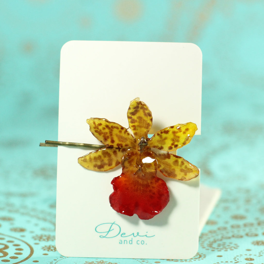 Tiger Cattleya Real Orchid Hair Pin - Devi & Co