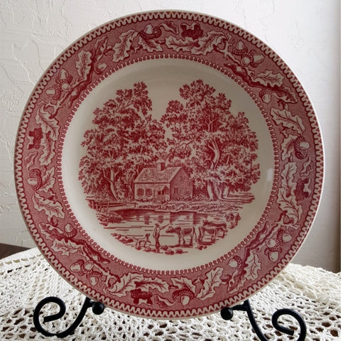 "Memory Lane 10"" Dinner Plate Royal Ironstone by Royal China Co  c. 1966 - 2aEmporium"