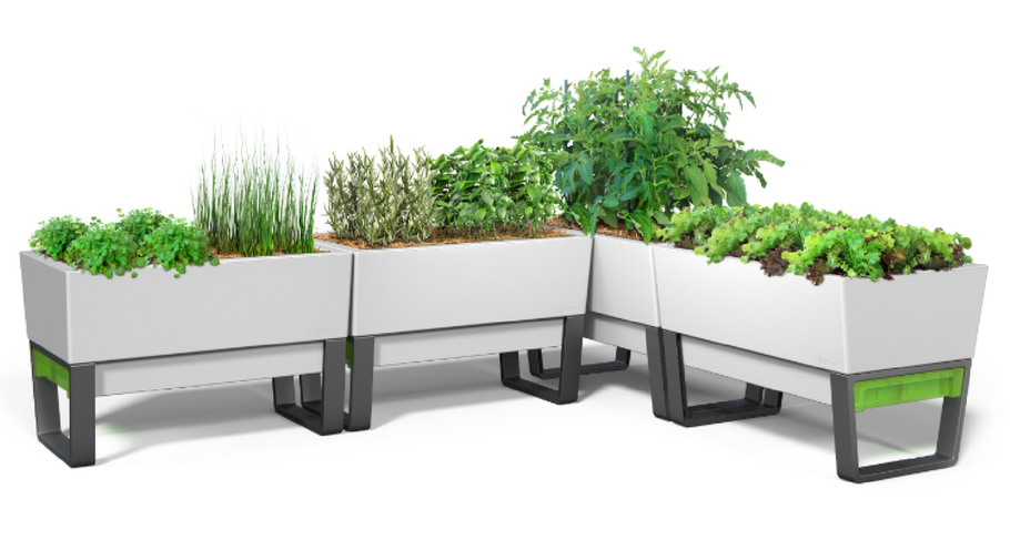 LOVE YOUR GARDEN? HERE COMES THE SELF WATERING PLANTERS