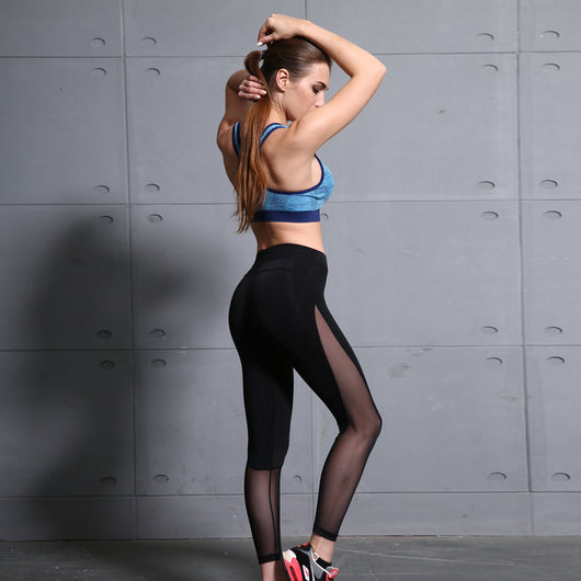 Total Mesh Leggings