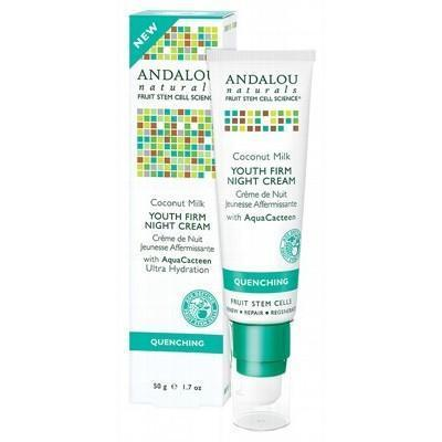 Coconut Night Cream 50g - ANDALOU NATURALS