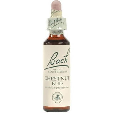 Chestnut Bud FLOWER REMEDIES 10ml - MARTIN & PLEASANCE