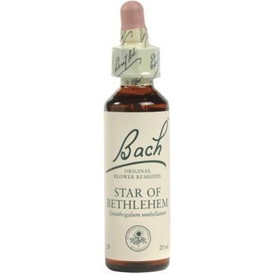 Star Of Bethlehem FLOWER REMEDIES 10ml - MARTIN & PLEASANCE