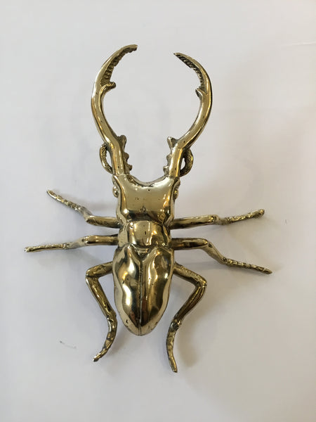 Brass | Nipper The Beetle