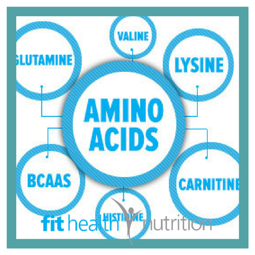 An Insight into Amino Acids - with Lexi McPhee