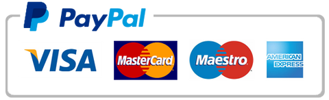 Image result for secure checkout paypal